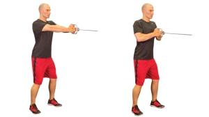 Pallof-Press-Exercise